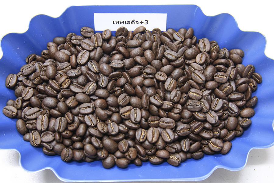 เมล็ดกาแฟคั่วเทพเสด็จคั่วกลาง