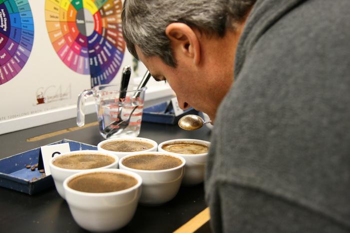 การชิมกาแฟ.