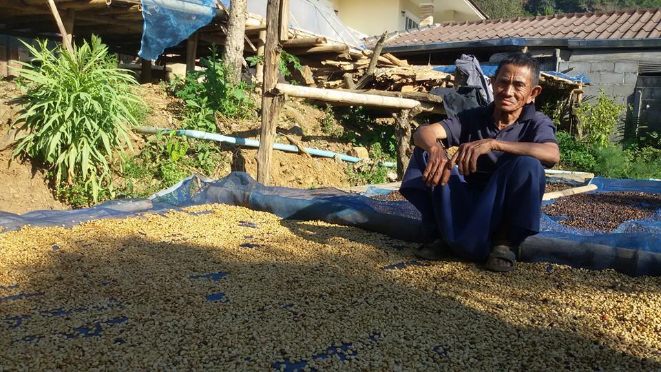กาแฟฮันนี่โพรเซส Honey Process 1