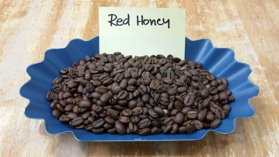 กาแฟฮันนี่โพรเซส Honey Process 5