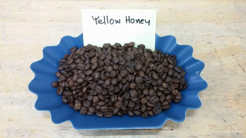 กาแฟฮันนี่โพรเซส Honey Process 7
