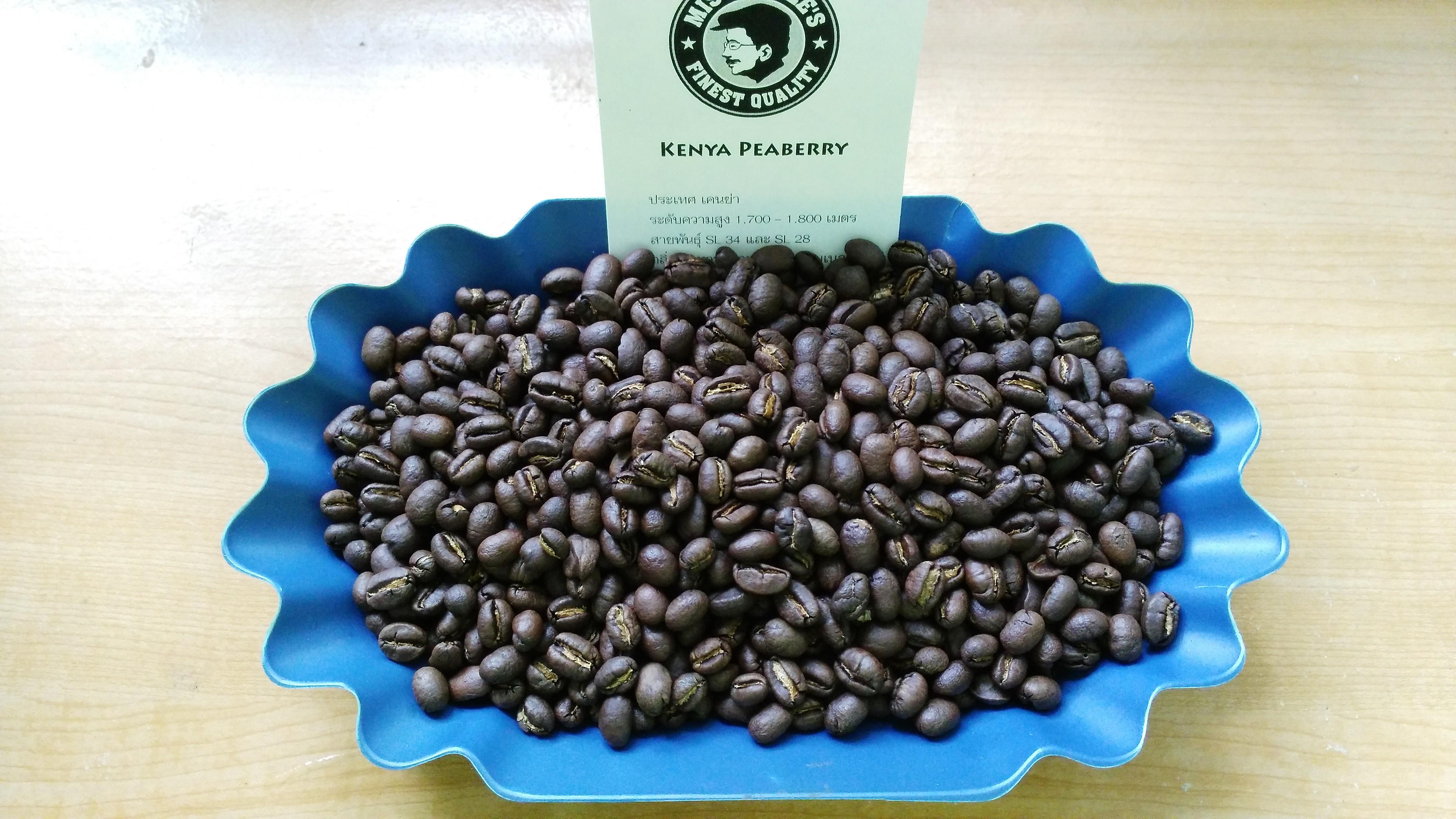 กาแฟเคนย่า ( KENYA )