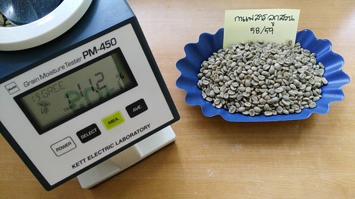 วัดความชื้นกาแฟ