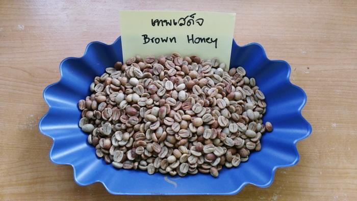 กาแฟฮันนี่โพเสส เทพเสด็จ ( Honey Process )
