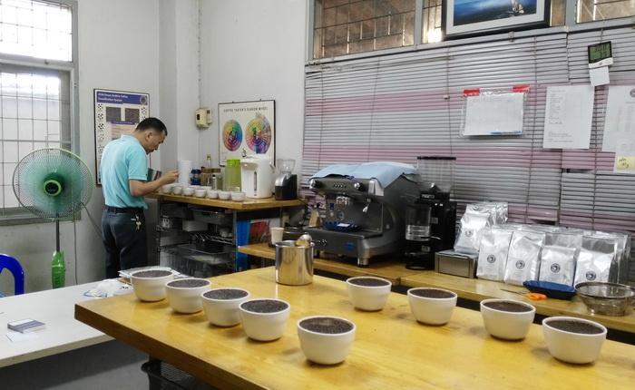 การชิมกาแฟ (cupping)